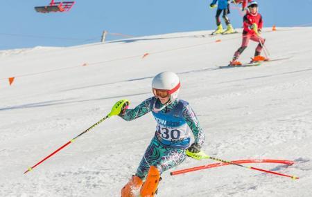 Ski Snowstar Image