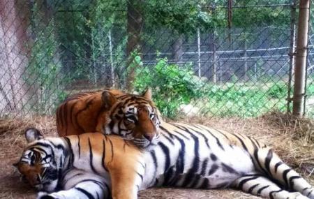 Riverside Wildlife Center Image