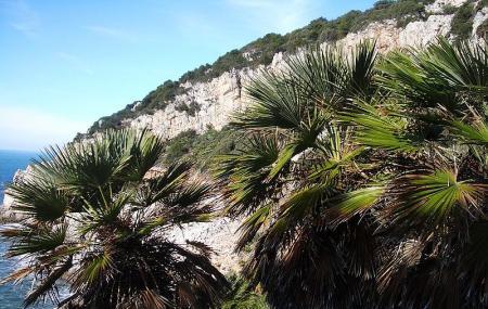 Parco Nazionale Del Circeo (sabaudia) Image