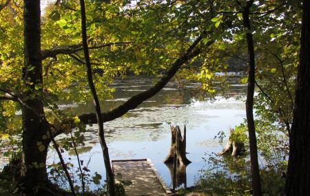 Springwater Conservation Area Image