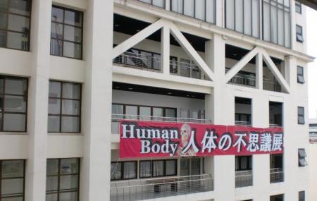 Human Body Museum Image