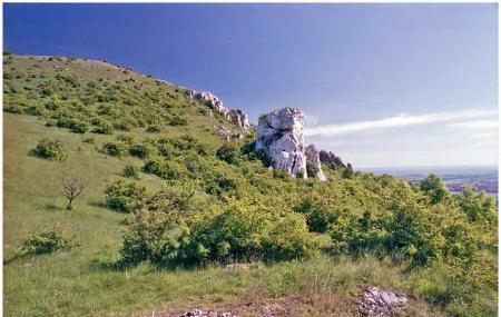 Ruzovy Vrch A Kocici Kamen Image