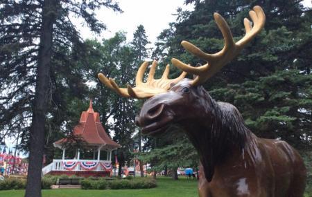 Honk The Moose Image