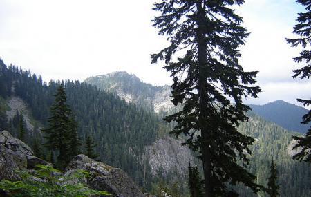 Mount Seymour Provincial Park Image