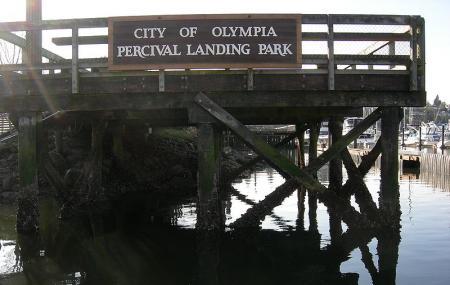 Percival Landing Image