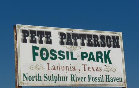 Ladonia Fossil Park Image