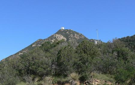 Fred Lawrence Whipple Observatory Image