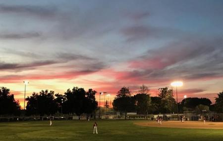 Beaumont Youth Baseball Image