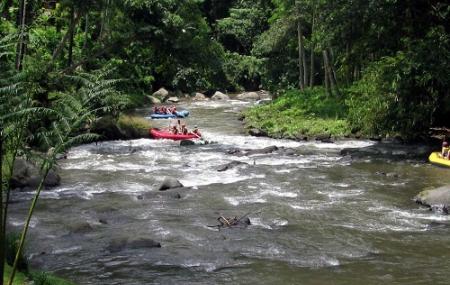 Ayung River Rafting Bali Gianyar Ticket Price Timings Address