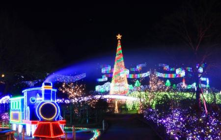 Ashikaga Flower Park Image