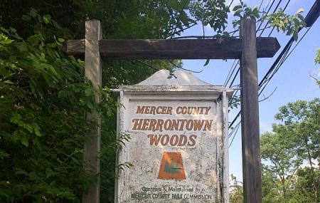 Herrontown Woods Arboretum Image