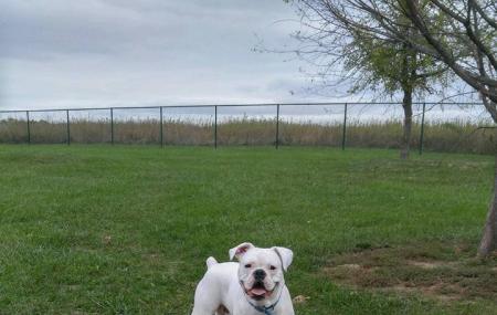 Quail Ridge Dog Park Image
