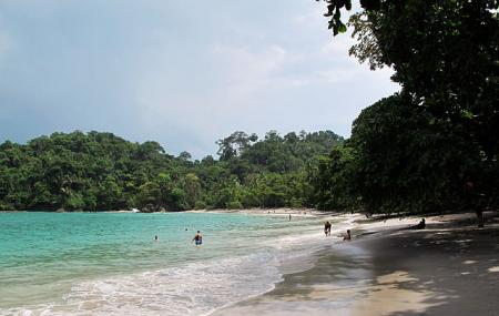 Espadilla Beach Image
