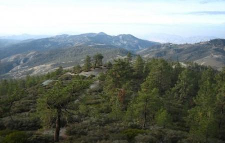 San Benito Mountain Research Natural Area Image