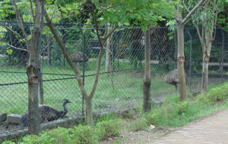 Nandan Van Zoo Image