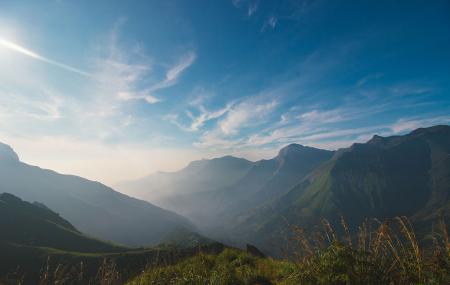 Pambadum Shola National Park Image