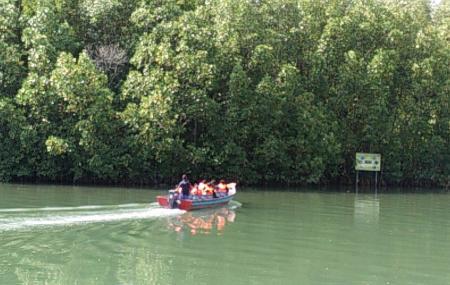 Cherating River Image