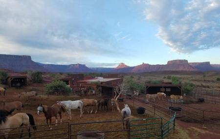 Hauer Ranch (moab Horses) Image