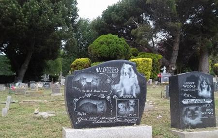 Pet's Rest Image