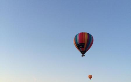 Go Wild Ballooning Image