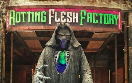 Rotting Flesh Factory Image