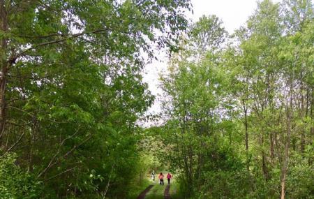 Woodland Park And Nature Preserve Battle Creek Image