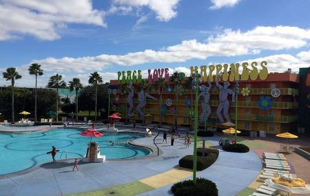 Hippy Dippy Pool Image