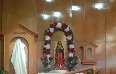 St Francis Of Assisi Catholic Image
