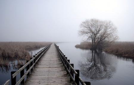 Point Pelee National Park Image