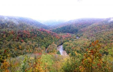 Loyalsock State Forest Image