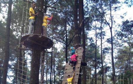 Tretes Treetop Adventure Park Image