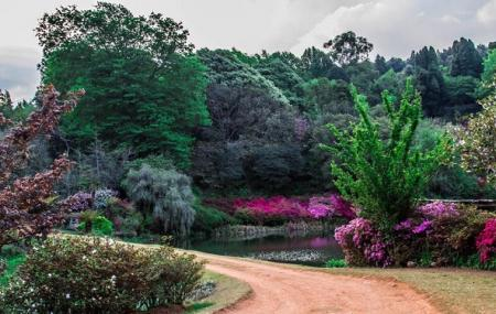Cheerio Gardens Image