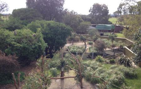 Jirrahlinga Koala & Wildlife Sanctuary Image