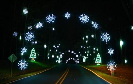 Tanglewood Festival Of Lights Image
