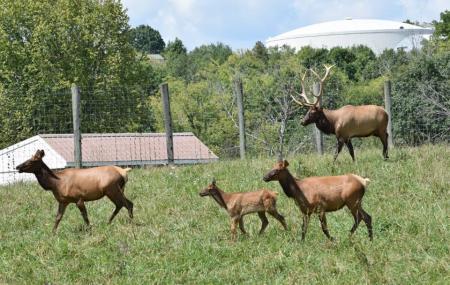 Salato Wildlife Education Center Image