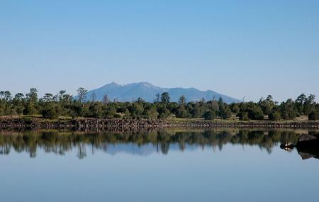 Ashurst Lake Image