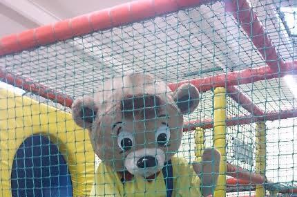 Darcy Bear Image