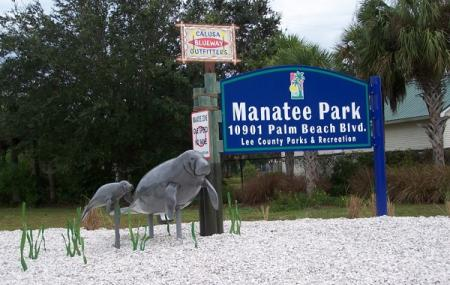 Lee County Manatee Park Image