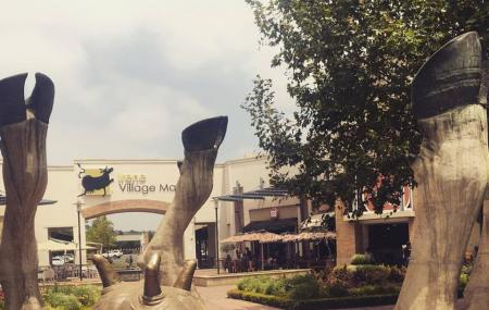Irene Village Mall Image