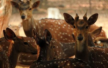 Ballavpur Wildlife Sanctuary Image