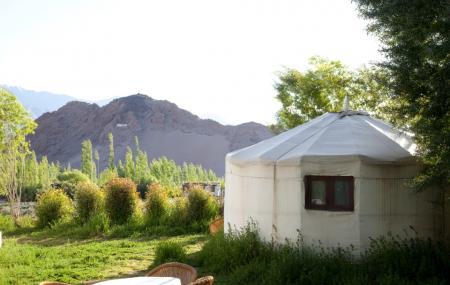 Ladakh Sarai Image