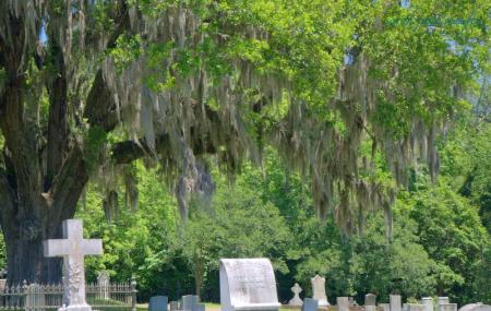 Historic Natchez Cemetery Image