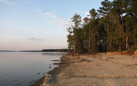 Poplar Point Campground Jordan Lake Sra Image
