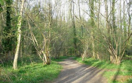 Itchen Valley Country Park Image