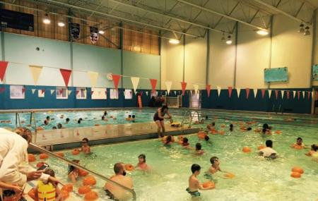 Springville Community Swimming Pool Image