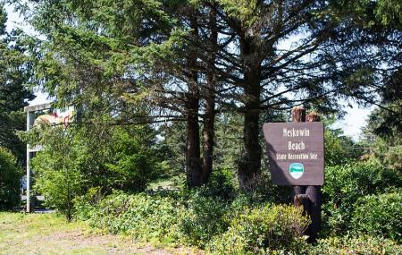 Neskowin Beach State Recreation Site Image