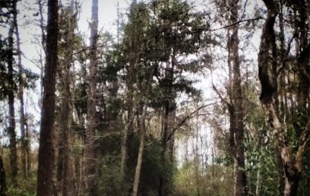 Turkey Creek Park Image