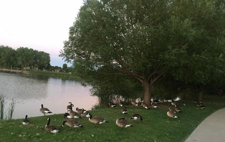 Huston Lake Park Image