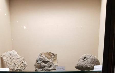 Crisp Museum Image