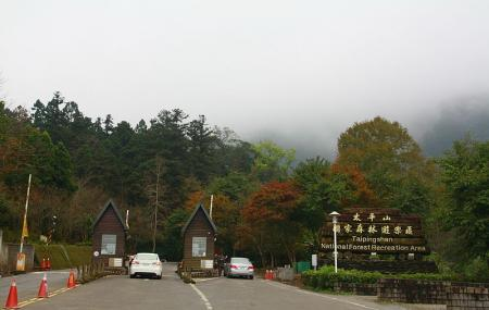 Taiping Mountain Forest Recreation Area Image